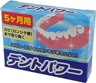 入れ歯洗浄剤 デントパワー 5ヶ月用 20包入
