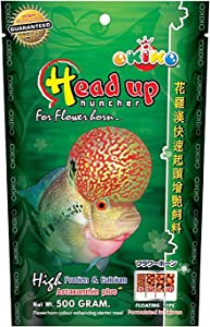Kiko Green 500 Gram. Floating Pellets Size L = 2.5 MM, FLOWERHORN Fish Food Head Up Quickly Huncher Formula HIGH Protein 51 % Tropical Fish Feed Astaxanthin Plus Color Enhancing Healthy Fast Growth