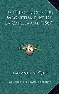 De L'Electricite, Du Magnetisme, Et De La Capillarite (1867)