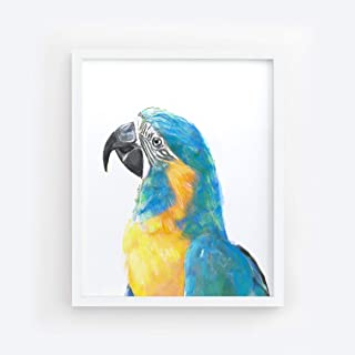 Blue Throated Macaw Bird Painting - Tropical Art Print, Signed By Artist