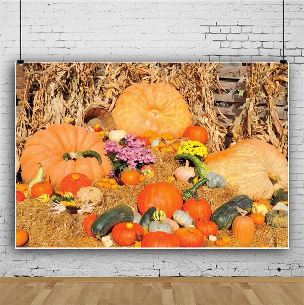 Leowefowa Autumn Harvest Backdrop 10x6.5ft Vinyl Hayrick Pumpkins Cornstalk Photography Background Thanksgiving Day Autumn Party Banner Child Adult Photo Booth Studio Props