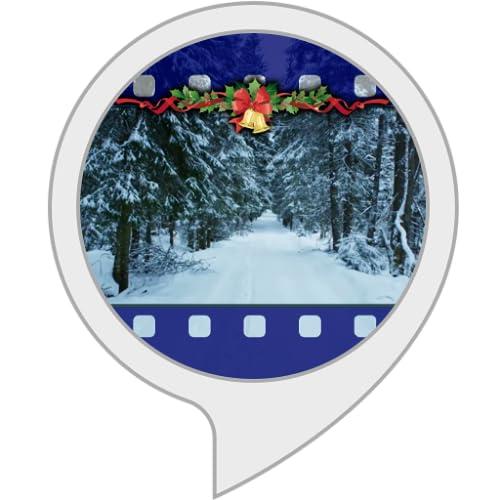Ambient Visuals: Bosque de invierno