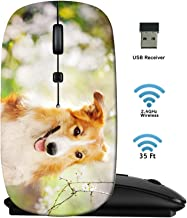 MSD Wireless Mouse 2.4G Travel Mice with USB Receiver, Noiseless and Silent Click with 1000 DPI for Notebook PC Laptop Computer MacBook Black Base Border Collie Dog Portrait on a Background of White