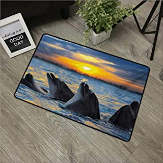 HRoomDecor Animal,Machine Washable Small Rug Photo of The Bottle Nosed Dolphins in Sunset Ocean Sea Animals Aquatic Print W 31