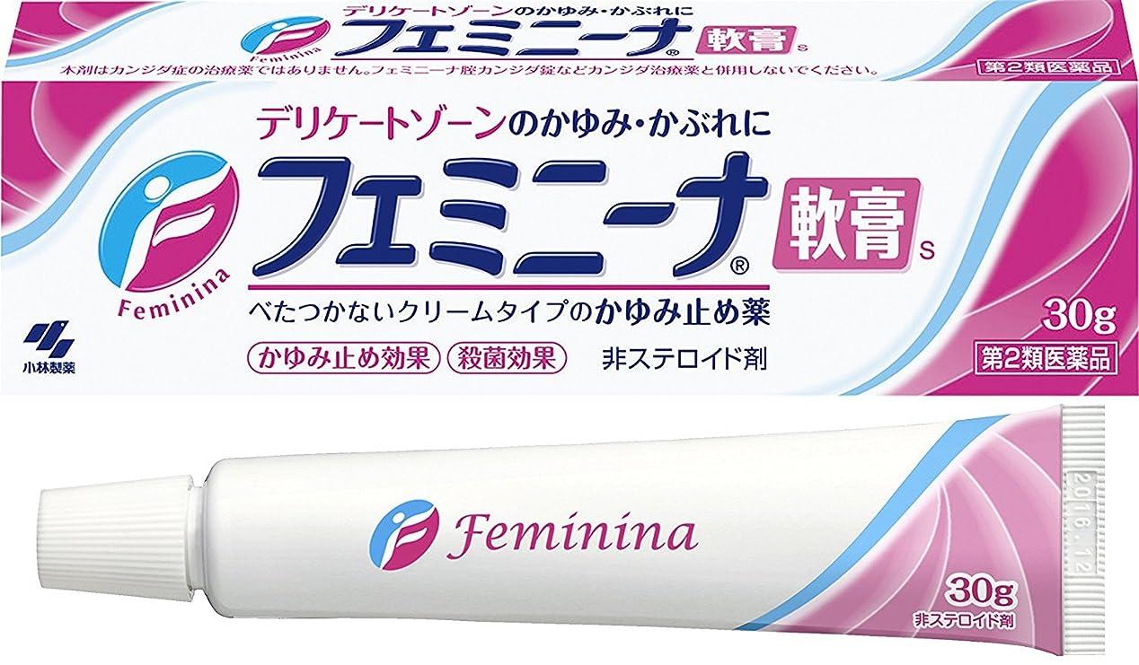 ブランド名マットレス郵便屋さん【第2類医薬品】フェミニーナ軟膏S 30g ×4