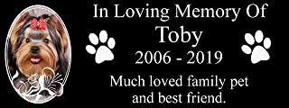 Cat Paw Prints Metal Aluminium Plaque Sign 200x75mm Champagne Gold Matt Custom Personalised Memorial Pets Dog