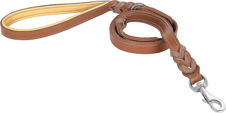 Riparo correa de cuero trenzado de perro con 2 asas, acolchado de tráfico de la manija, la formación de perros correas de paseo para perros medianos y grandes (Marrón , L: 1,9 cm x 1,8 m)