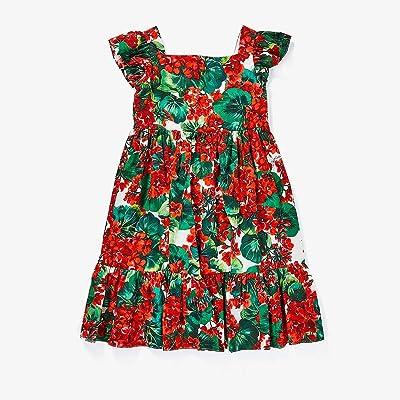 Dolce & Gabbana Kids Portofino Print Poplin Dress (Little Kids) (Geranium Print) Girl