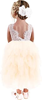 Girl Peony Lace Back Backless A-Line Tiered Tutu Tulle Flower Girl Dress