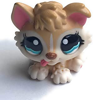 Husky Puppy #1013 (Tan, Blue Eyes) - Littlest Pet Shop (Retired) Collector Toy - LPS Collectible Replacement Single Figure - Loose (OOP Out of Package & Print)