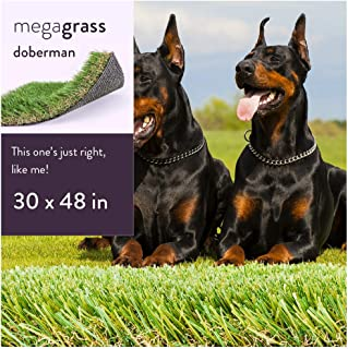 Best real grass pet toilet Reviews