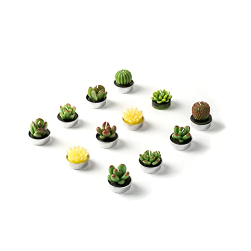 Hahihi Decorative Scented Smokeless Cactus Tealight Candles, Cute Mini  Succulent Plants Candles (Perfect For