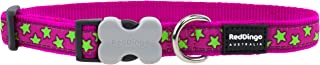 Red Dingo 25mm Hot Pink with Stars Dog Collar, Large, Lime Green