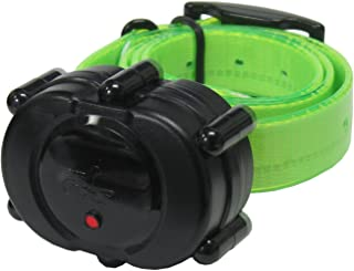 DT Systems Add-On or Replacement Training Collar Receiver, Fluorescent Green