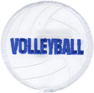 Volleyball Small 2 inch Patch Ava0203