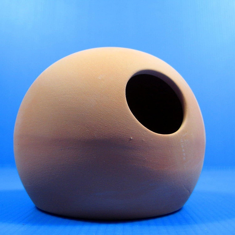 Ceramic Spawning Dome Aquarium Ornament  Breeding Cones Cave Cichlid DECOR Hide by Aquarium Equip