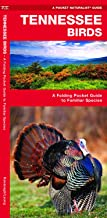 Tennessee Birds: A Folding Pocket Guide to Familiar Species (Wildlife and Nature Identification)