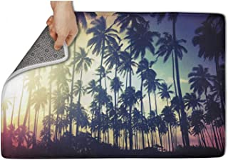 Fensissii Easy Clean Doormats Palm Trees Wallpaper Tumblr Front Door Entrance Outside Doormat,for Home Entrance, Garage, Office(Size:31