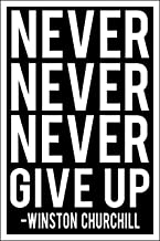 Spitzy's Never Never Never Give Up Motivational Poster (12