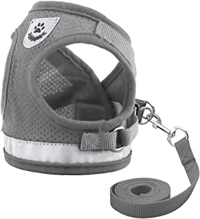 Didog Reflective Dog Cat Vest Harness and Leash Set for Kitten Small Dogs,Escape Proof Mesh Puppy Harnesses for Walking Cat and Small Dogs
