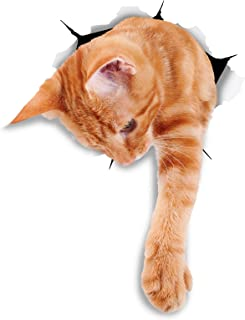 Winston & Bear 3D Cat Stickers - 2 Pack - Reaching Ginger Decals for Wall - Orange Cat Stickers for Car - Fridge - Toilet - Room - Retail Packaged Orange Cat Gift