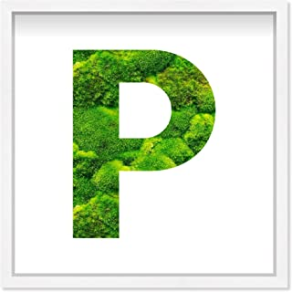 The Oliver Gal Artist Co. Alphabet Letter P Nature' Framed Moss Live Wall Art Home Décor, 12