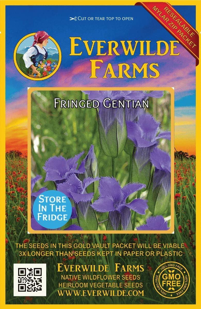 Everwilde Farms - 500 Fringed Seeds Gentian Wildflower Japan Maker New Native Spasm price