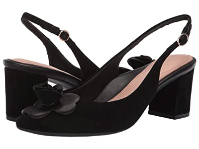 Taryn Rose Michelle (Black Suede) Women