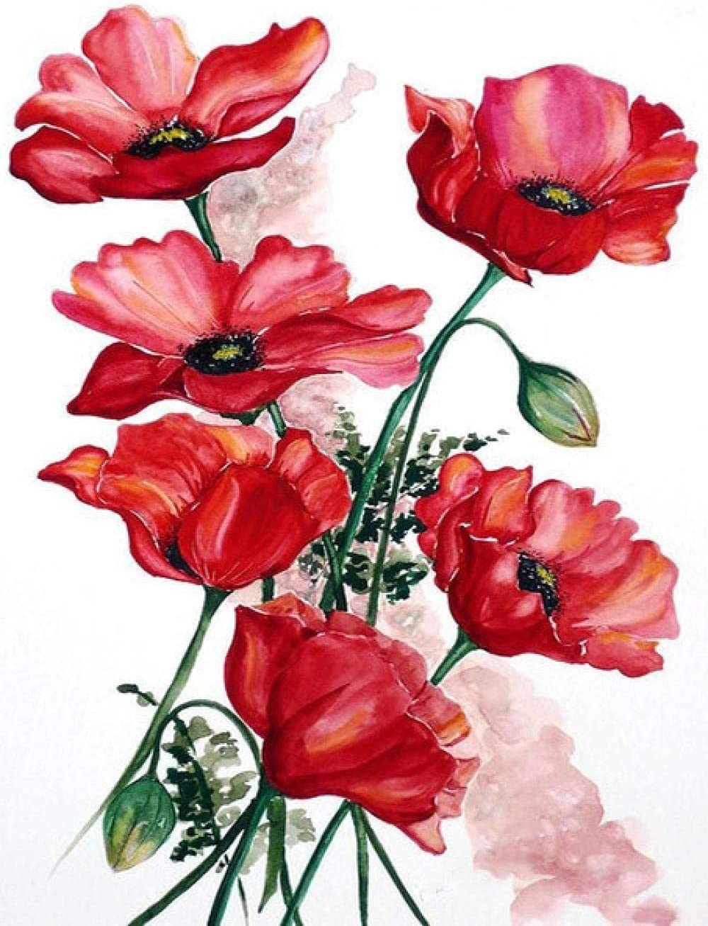 HRKDHBS DIY Oil Paint by Number Painting Flower Kit Ranking TOP11 Numbe Memphis Mall Red