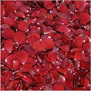 Flyboy Naturals Valentine Red Rose Petals -15 Cups of Preserved Freeze Dried Rose Petals. Wedding Rose Petals from