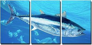 "wall26 - 3 Piece Canvas Wall Art - Bluefin Tuna Thunnus Thynnus Saltwater Fish in Mediterranean - Modern Home Decor Stretched and Framed Ready to Hang - 24""x36""x3 Panels"