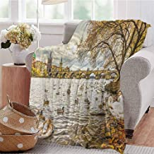 Landscape Comfortable Large Blanket Prague Charles Bridge and Old Town Czech Republic Riverside Scenic View with Swans Microfiber Blanket Bed Sofa or Travel W91 x L60 Inch Gold Grey