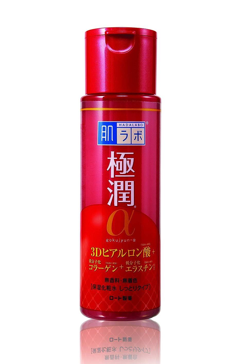 中世のパーティションきょうだい肌研 極潤α 化粧水 170ml