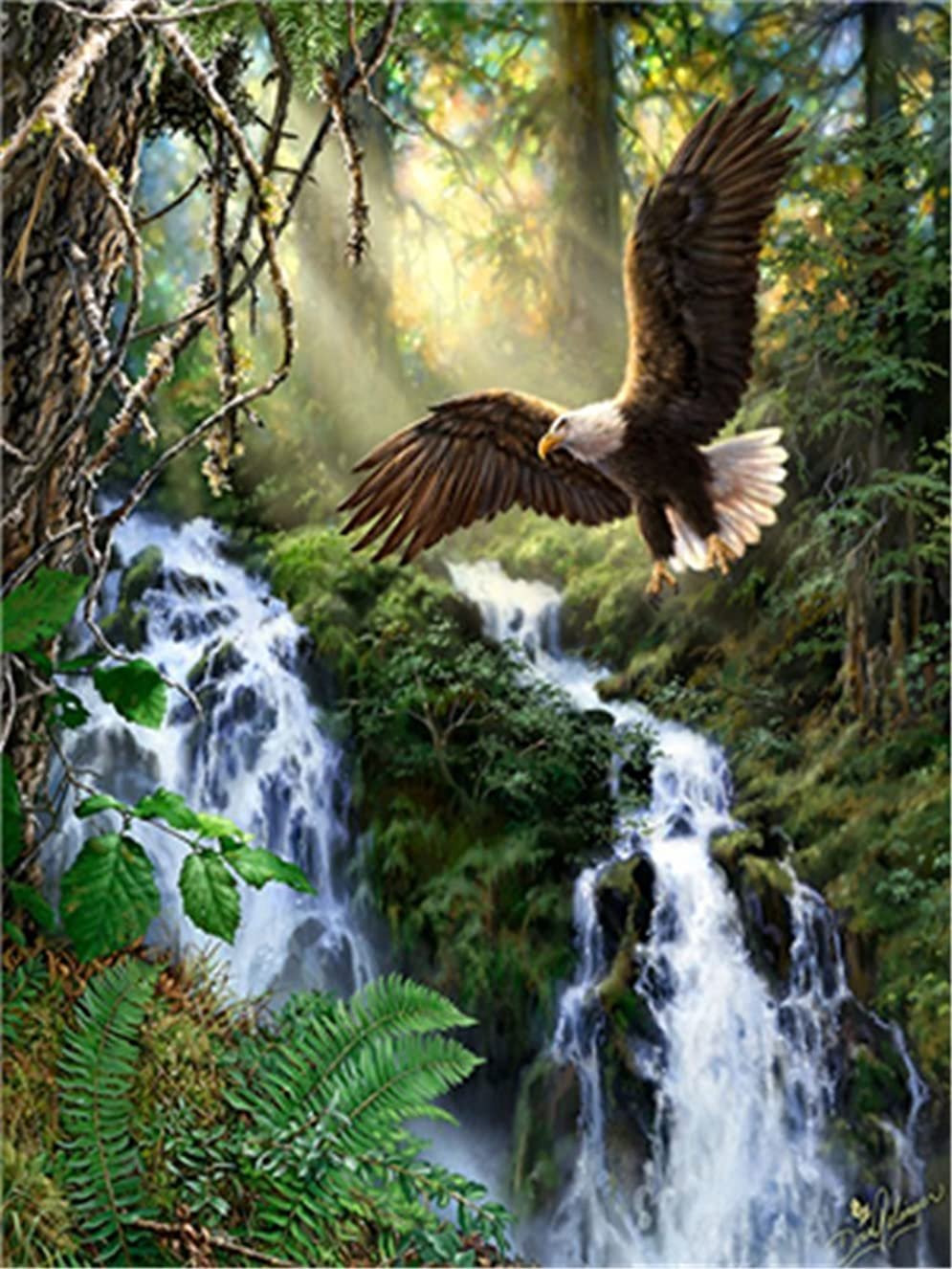 Diy Oil Paint by Number Kit for Adults Beginner 16x20 inch - Flying Eagle in Forest, Drawing with Brushes Christmas Decor Decorations Gifts (Frame) osqnqeytnx1938