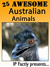 25 Awesome Australian Animals! Amazing facts, photos and video links to some of the most amazing animals in Australia! (25...