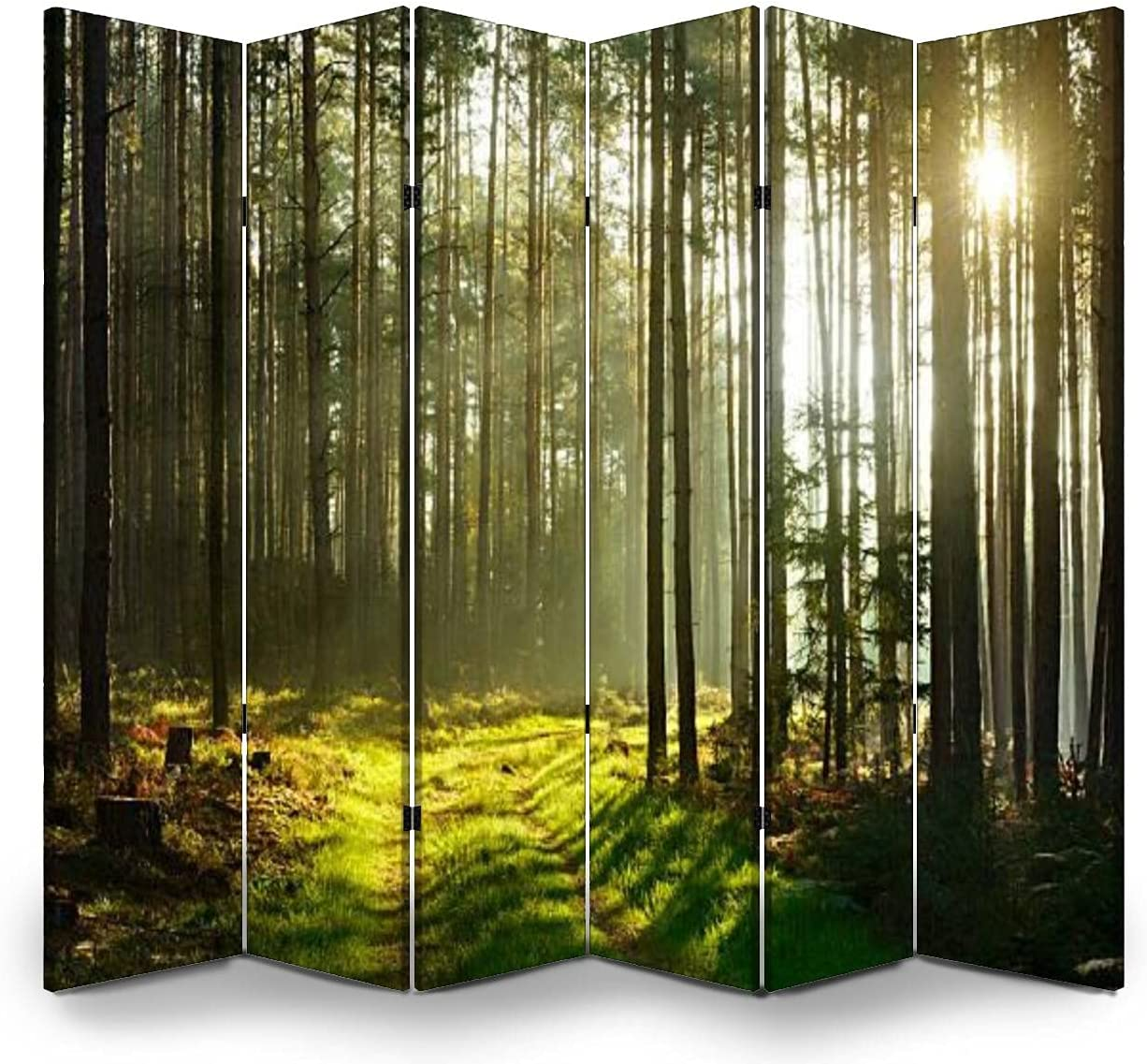 SALENEW very popular! 6 Panels Room Divider Free Shipping Cheap Bargain Gift Screen Breaking Partition Through Sunbeams