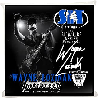 SIT Strings S.I.T. Stay In Tune SS-S1158WL Wayne Lozinak Signature Series Power Wound Electric (
