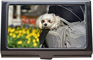 Business Card Holder Wallet Credit Card ID Case,Little Dog Dog Animal Mammal Canine Pet Domestic,Business Card Case Stainless Steel
