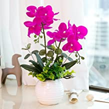 YILIYAJIA Artificial Orchid Bonsai with Ceramics Vase, Fake PU Real Touch Flowers Phalaenopsis Bonsai for Table Office Home Party Decoration(Style 1, White Vase)
