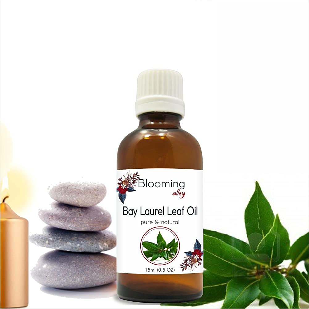 拾う群衆排除するBay Laurel Leaf Oil (Laurus Nobilis) Essential Oil 15 ml or .50 Fl Oz by Blooming Alley