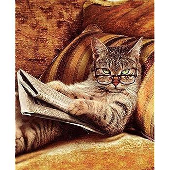 DIY 5d Diamond pintura por n/úmero Kit Full Diamond lectura libro gato cristal rhinestone adornos de punto de cruz dise/ño de bordado artes manualidades lienzo pared decoraci/ón