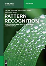Pattern Recognition: Introduction, Features, Classifiers and Principles