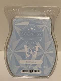 Scentsy Clothesline Bar Wickless Candle Tart Wax 3.2 Fl Oz, 8 Squares