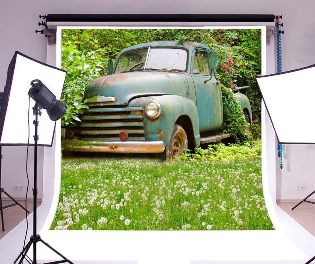 SZZWY Vinyl 5x5ft Photography Background Retro Car Outdoor Vintage Background Dandelion Florets Grassland Green Trees Shabby Painted Car Backdrops Portraits Shooting Video Studio