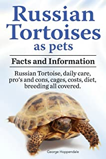 Russian Tortoise as pets. Russian Tortoises: facts and information. Daily care, pro's and cons, cages, costs, diet, breeding all covered.