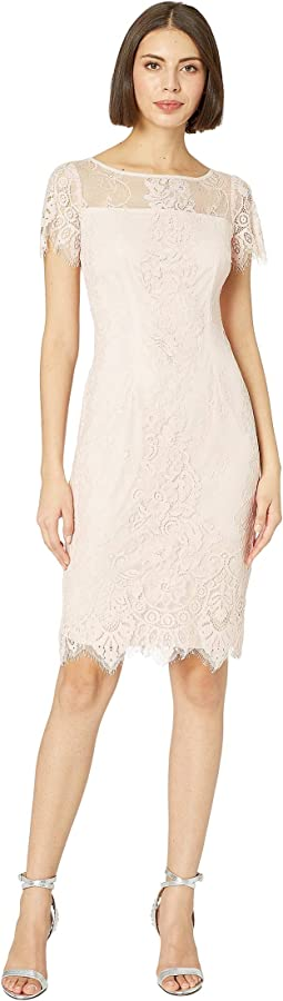 Adrianna papell plus size illusion neck lace dress champagne ...