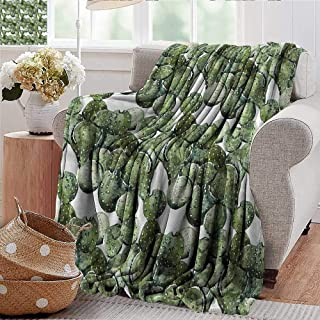 Xaviera Doherty Throw Blanket Cactus,Opuntia Plant Watercolor Microfiber All Season Blanket for Bed or Couch Multicolor 60