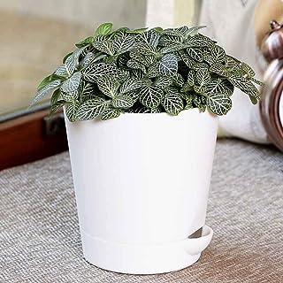 UGAOO Plant with Self Watering Pot