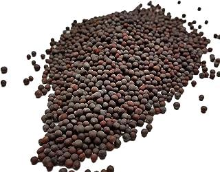 Semillas de Mostaza Negras - SPICESontheWEB (100g)