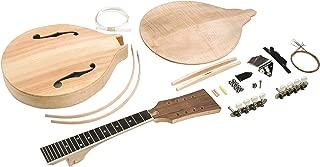 f style mandolin build kit